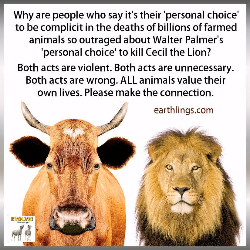 Cecil the Lion Choose Vegan Make the Connection